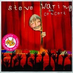 steve-waring en concert.jpg